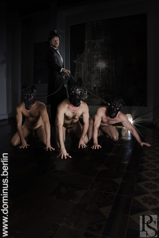top escort pordenone master gay escort